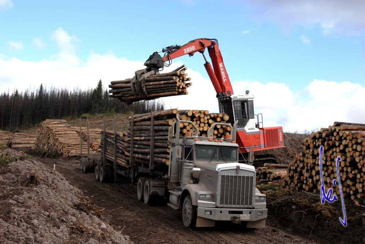 Forestry Industry Leif Grandell