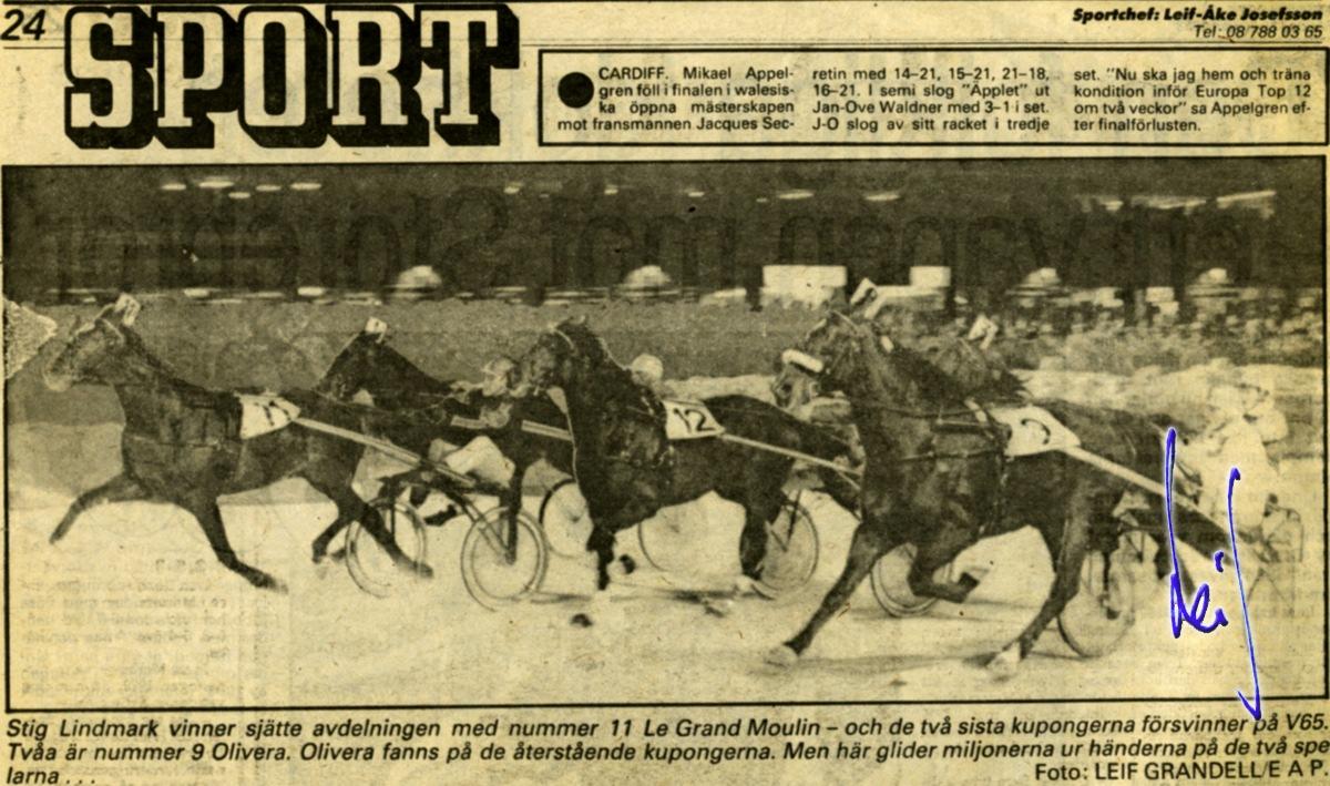 newspaper articles horse racing