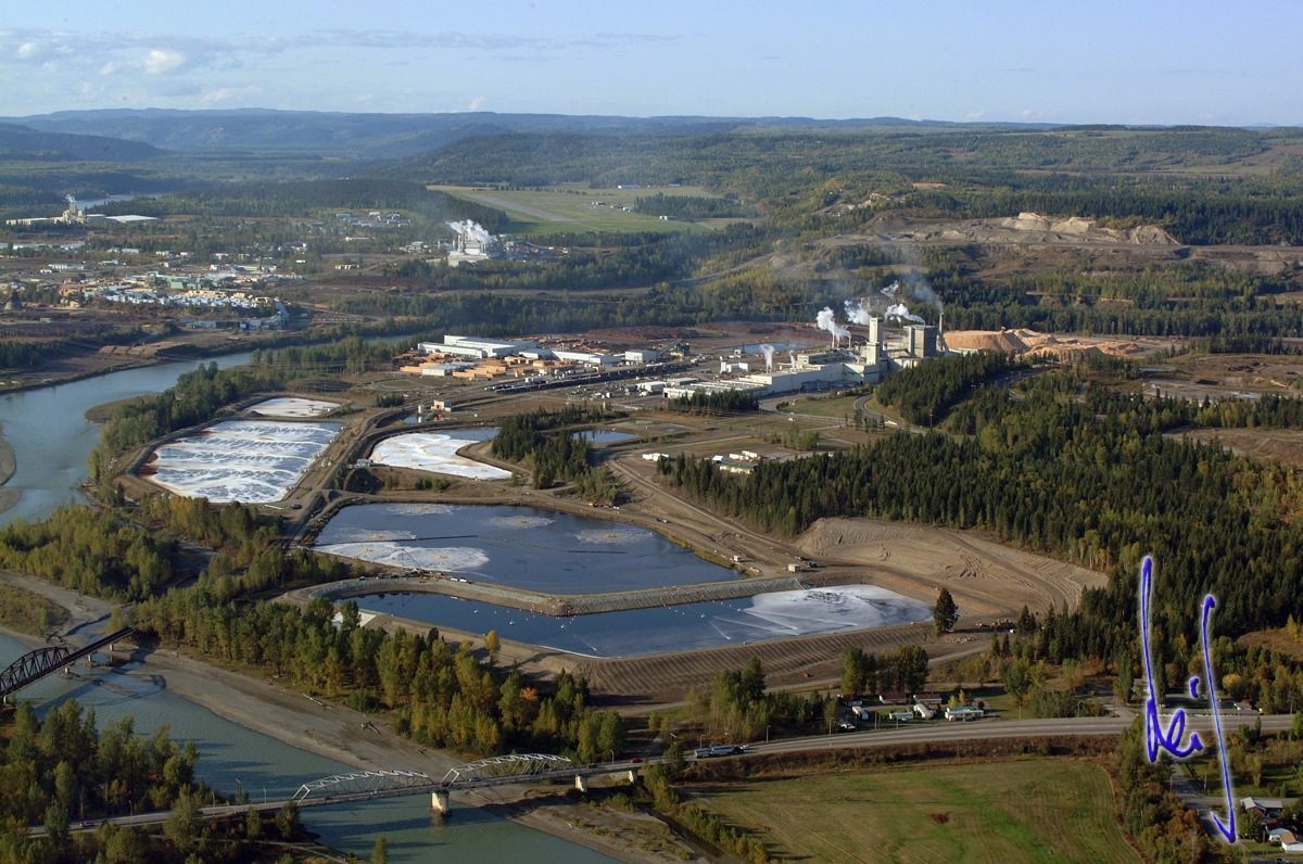 columbia river pulp company inc The bank has to decide if and how it will help columbia pine pulp company (crp) the bank must evaluate crp's projections, capital structure, securit.