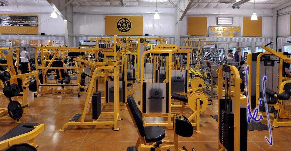 Gold's Gym | Leif Grandell